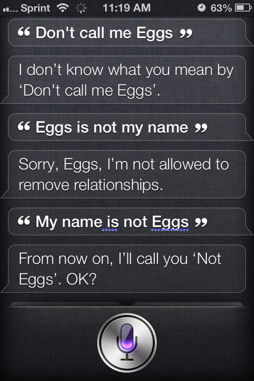 call not eggs funny siri ARTfXig