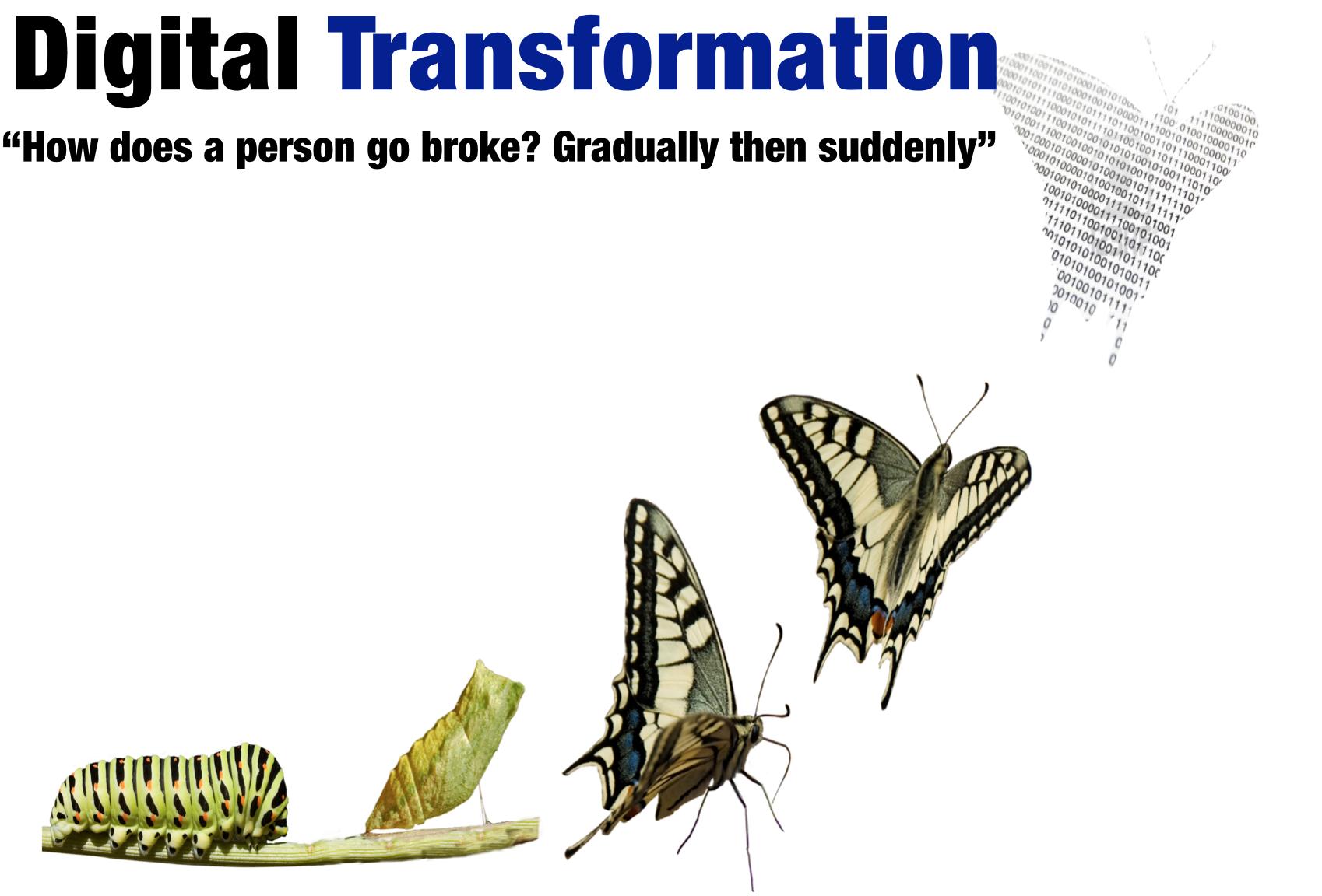 digital transformation gradudally suddenly